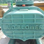 Roots Blower Customize For Bio-Gas